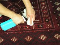 Area Rug Handwashing